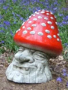 lil-mushroom